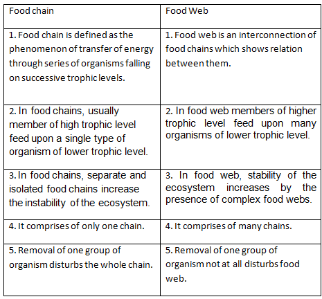 Difference Between Food Chain And Food Web Brainly - slideshare