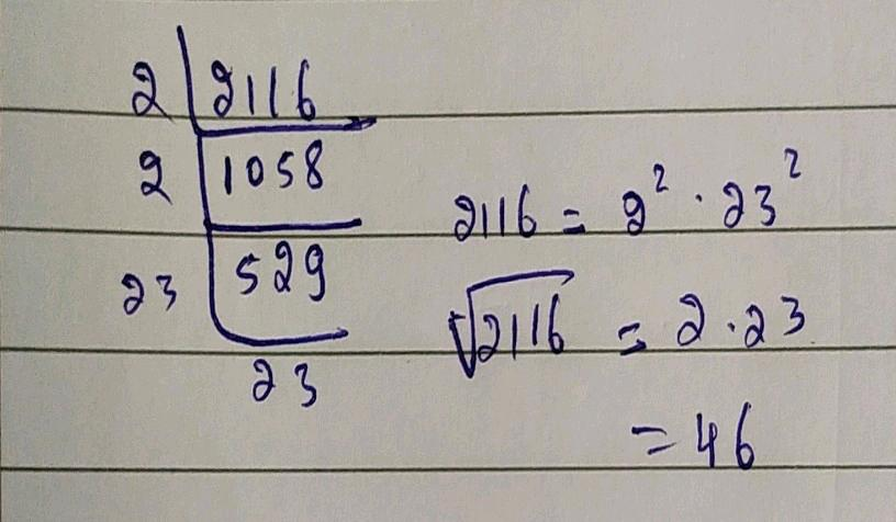 3 Find The Square Root Of The Following Numbers By Prime Nfactorisation Method N Begin Array L L L Text I 676 Text Ii 484 Text Iii 2304 End Array